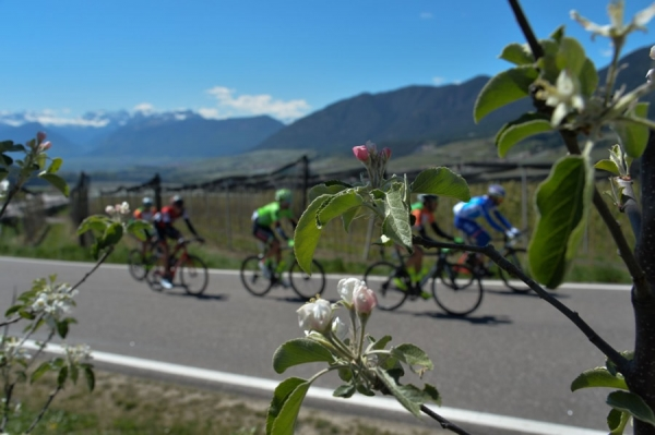 Tour of the Alps 2018: ecco i nove World Teams al via